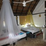 Cosy beds with mosquito nets