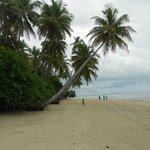 Praia em Moreré.