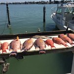 Our catch ready for filletting