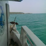 A view from the boat