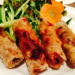 Deep fried spring rolls (can't stop)