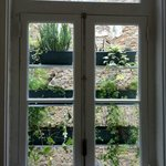 How to decorate nicely a blind view