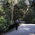 The bridge that unites both sides of Trianon Park