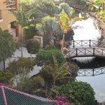 hotel garden area