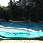 Swim Up Pool