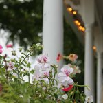 Porch flowers - jazz in the afternoons