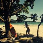 Vista sob as sombras das castanheiras da praia de Lopes mendes