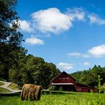 Creekside Resort Red Barn