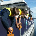 On board you will take part in hands-on experiments such as measuring water clarity.