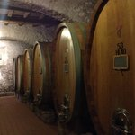 From the Frascati winery tour