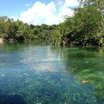 Ballade en bateau dans la mangrove