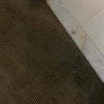 wet mouling carpet