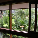 """View from """"Garden View"""" room"""