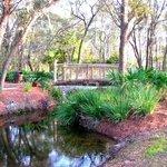 Peaceful Gardens.