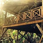 Hamanasi Tree house.... Our love nest