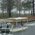 Swamp Boat Tour in the Cold Rain - Okefenokee