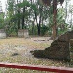 Wormsloe's estate/ tabby ruins