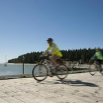 Wheelie Fantastic Cycle Hire & Tours
