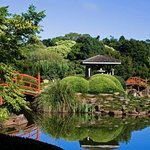 Japanese Garden Toowoomba