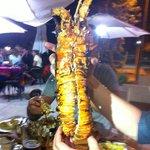 aragosta (1,5kg)