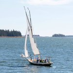Sailing in Muscongus Bay