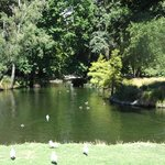 The duck ponds are among the many attractions