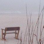 early morning fog on the beach