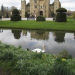 Hever in March