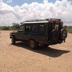 la Jeep del safari