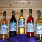 Sample our award winning wines like Cranberry Crush and our popular Horny Heifer.