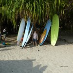 Surf Boards!!!