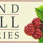 Sand Hill Berries