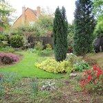 our rear garden