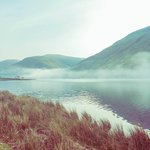 misty morning at Tal-y-Llyn