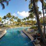 Radisson Aruba Pool and Grounds