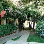 Jardim e apartamento