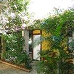 Apartamento e jardim