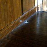 Thick dust around door / inside wardrobe (photo taken March 2014)