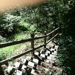 Staircase to Ingram Creek and nature stroll.