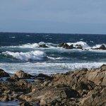 17 mile drive coast line Monterey California
