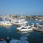 View of Key West marina from our room balcony