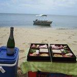 Picnic lunch on Watsons beach