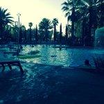 Floridays main pool