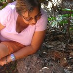 Doña Laura talks to a lava lizard