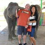 baby elephant kiss