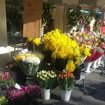 Flowers on market day