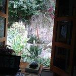 vista jardin desde ventana de habitación