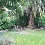 planta del patio