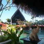 Resort Pic