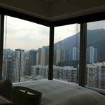 Urban Corner Room & View